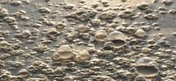 Pollutions aux hydrocarbures suite aux inondations